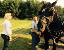 John Hutchison hitching his team of Percherons for trip to haunted Moonville Tunnel